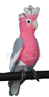Rose Breasted Cockatoo (Galah) 3D pattern